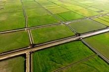جلوگیری از تغییر کاربری 26 هزار مترمربع از اراضی زراعی کلاردشت