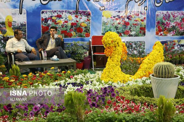 برپایی نمایشگاه گل و گیاه در اردبیل