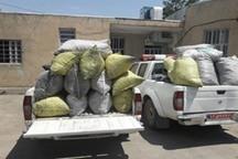 40 کیسه زغال غیر مجاز بلوط در خرم آباد کشف شد