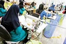 آغاز طرح آموزشی کسب و کار زنان سرپرست خانوار در قزوین