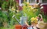 کسب انرژی مثبت با باغبانی