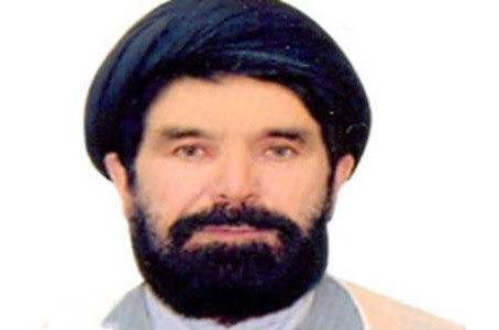 نویسنده افغان: انقلاب اسلامی ایران امانتی بسیار ارزنده است