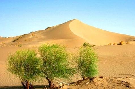 سیر بیابانزایی در کشور شدت گرفته است