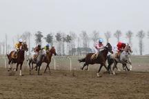 هفته 21 مسابقات اسبدوانی گنبدکاووس برگزار شد