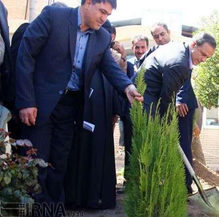 استاندار کرمان: منابع طبیعی با مشارکت دولت و مردم حفظ می شود