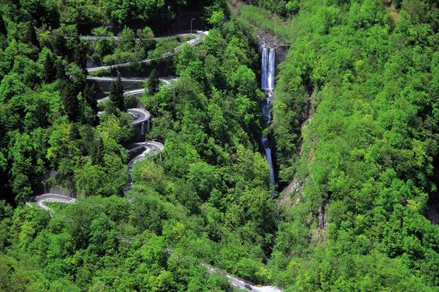 طرح کاداستر در جنگل های کشور عملیاتی می شود
