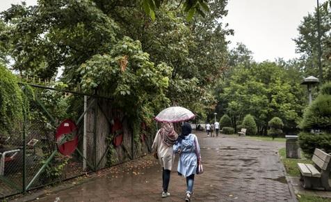 بارش باران تابستانی در رشت+ تصاویر