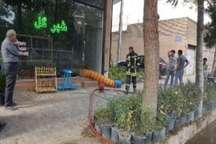 یک گل فروشی در سبزوار در آتش سوخت