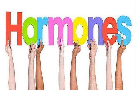 شیوه های طبیعی برای تعدیل هورمون های ضروری بدن