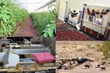 7394 طرح دریافت تسهیلات روستایی در سامانه کارا ثبت شد
