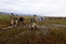رفع تصرف 27 هزار متر مربع از اراضی تالابی منطقه حفاظت شده لیسار