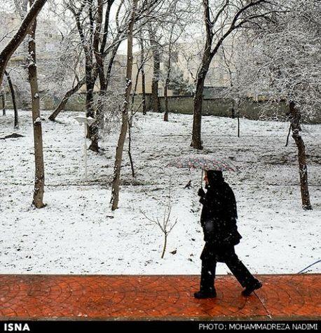 برف در تهران + تصاویر