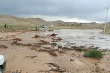 6 نفر گرفتار سیلاب در خراسان جنوبی نجات یافتند