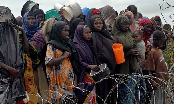 عکس روز/ داستان «باشی» قصه هزاران مهاجر درمانده