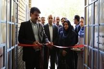 افتتاح طرحهای خدماتی و اشتغالزایی بهزیستی استان در بروجرد