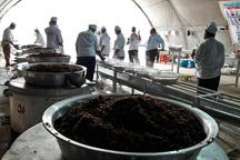 موکب لواسان روزانه 7 هزار غذای گرم در سوسنگرد توزیع می کند