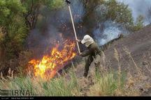 وسعت اراضی خسارت دیده از آتش سوزی قزوین اعلام شد