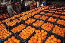 ذخیره سازی 2500 تن میوه شب عید در سردخانه های خوزستان
