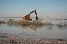 سیلاب به 10 هزار هکتار از مزارع نیشکر خسارت وارد کرد