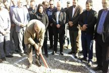 عملیات ساخت کتابخانه و خانه کشتی در مشکین دشت فردیس آغاز شد