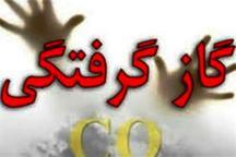 مسمومیت ناشی از نشت گاز 4 عضو یک خانواده در تهران را روانه بیمارستان کرد