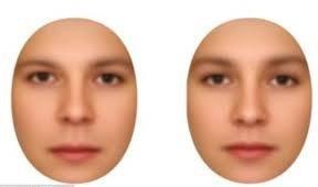 مغز چگونه جنسیت افراد را تشخیص می دهد؟