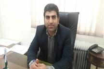 مدیرشرکت توزیع برق پلدختر: شبکههای برق قربانی اختلافات و نزاعها در پلدختر شد