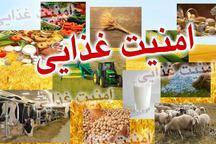 سند امنیت غذایی سیستان و بلوچستان بزودی امضا می شود