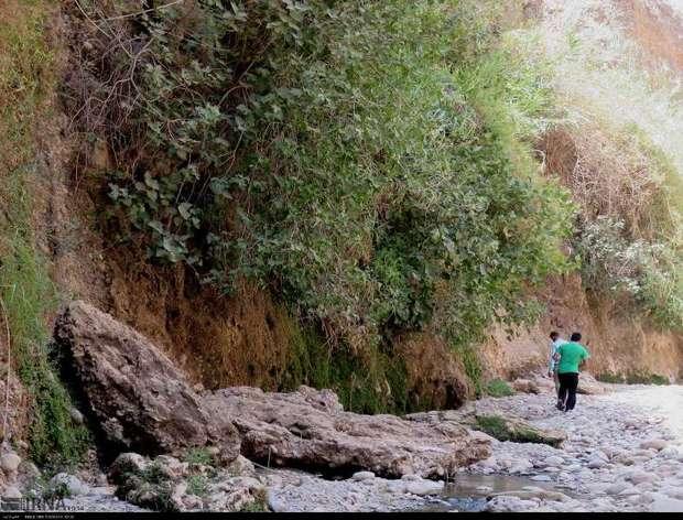 پل پرزین منطقه ای گردشگری در گتوند که باید بهتر دیده شود