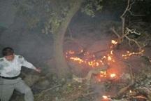 90 هکتار مرتع روستایی مهاباد در آتش سوخت