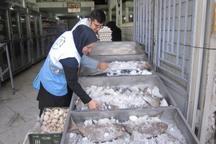 مراکزتهیه و توزیع مواد غذایی فسا زیرذره بین بازرسان رفتند