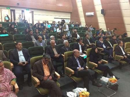 سهم اقتصاد سبز از اقتصاد ایران نیم درصد است