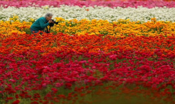 عکس/  اولین روز بهار