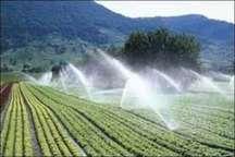 طرح آبیاری تحت فشار در 262 هکتار از باغ های دیلمان اجرا شد