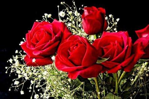 تولید مدار الکترونیکی از گل رز