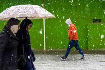 برف و باران آسمان کردستان را فرا میگیرد