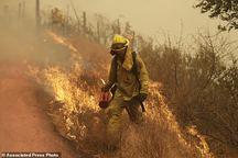 مرگبارترین آتش سوزی تاریخ کالیفرنیا+ تصاویر
