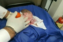 نوزاد ریگانی در آمبولانس چشم به جهان گشود