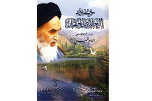 کتاب «جنود العقل و الجهل» به زبان عربی منتشر شد