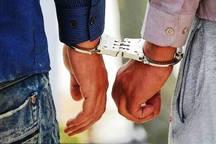 اعضای باند سارقان حرفه ای در ماهشهر دستگیر شدند