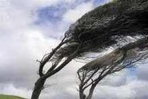 وزش باد با سرعت 70 کیلومتر بر ساعت استان زنجان را در بر می گیرد