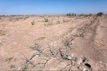 خشکسالی بسیار شدید در 94 درصد از مساحت چهارمحال و بختیاری