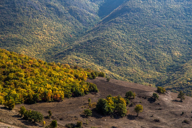 اختصاص 200 میلیون دلار برای بهبود منابع طبیعی کشور