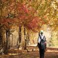 بلیران؛ بهشت پنهان مازندران در نزدیکیِ تهران/ ویژگی ها +مسیر سفر