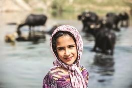 زندگی در کوچههای گاومیشآباد