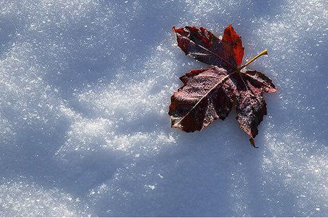 چرا پاییز امسال، هوا اینقدر سرد شد؟