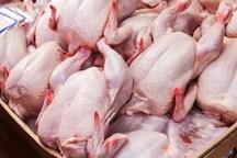 علت افزایش قیمت مرغ امتناع از عرضه بود