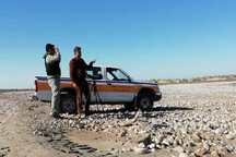 آنفلوانزای پرندگان در عرصه طبیعی دشتستان مشاهده نشد