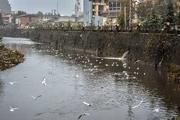 سه  ماه و یک روز حبس برای آلوده کننده رودخانه زرجوب رشت