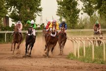 61 اسب در هفته دهم مسابقات اسبدوانی گنبدکاووس رقابت کردند